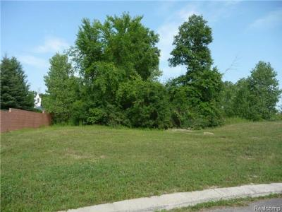 Trenton Residential Lots & Land For Sale: 4581 Orville