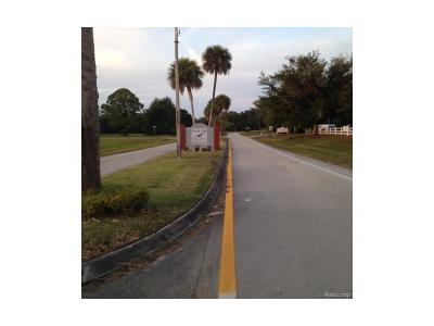 Residential Lots & Land For Sale: 1265 Blue Heron Drive