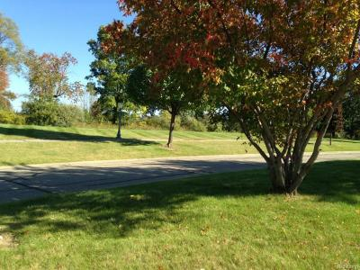 Residential Lots & Land For Sale: 7429 Village Court