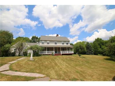 Northville Single Family Home For Sale: 49520 7 Mile Road