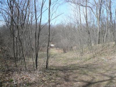 Oakland Twp Residential Lots & Land For Sale: E Gunn Rd