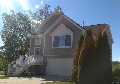 City Of The Vlg Of Clarkston, Clarkston, Independence, Independence Twp Single Family Home For Sale: 4526 Sunflower Circle