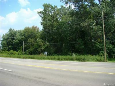 Residential Lots & Land For Sale: Dix