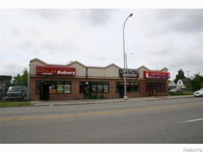 Commercial For Sale: 15723 W Warren Avenue