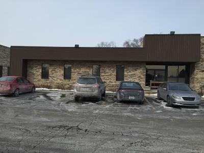 Farmington Hills MI Commercial For Sale: $375,000