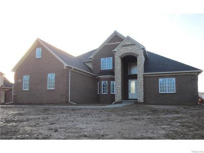 Novi Single Family Home For Sale: Beck Road