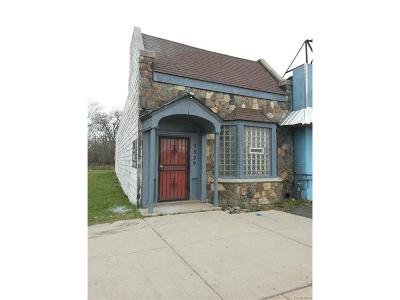 Detroit MI Commercial For Sale: $175,000