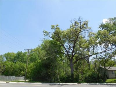 West Bloomfield Twp Residential Lots & Land For Sale: 0001 Haggerty Road