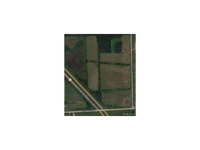 Bruce Twp Residential Lots & Land For Sale: 71452 Dolores Drive