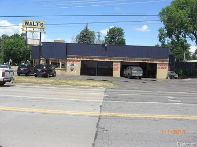 Commercial For Sale: 27330 Van Born Road
