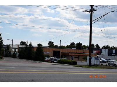 Oakland County Commercial For Sale: 5005-1 Williams Lake Road