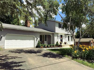 City Of The Vlg Of Clarkston, Clarkston, Independence, Independence Twp Single Family Home For Sale: 6556 Amy