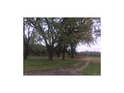 Huron Twp Residential Lots & Land For Sale: 19609 Merriman Road
