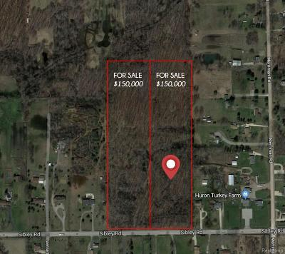 Huron Twp Residential Lots & Land For Sale: 1 Sibley Road