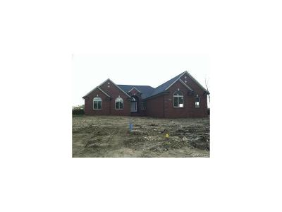 Bruce Twp MI Single Family Home For Sale: $450,000
