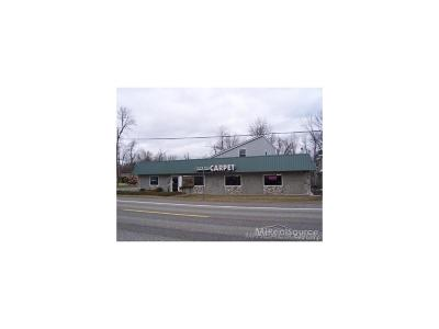 Commercial For Sale: 4682 Pointe Tremble Road