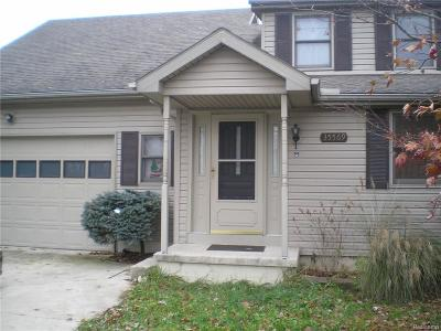 Brownstown Twp Single Family Home For Sale: 35569 Erie