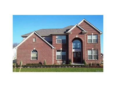 Oxford Single Family Home For Sale: 245 Fairway View Drive