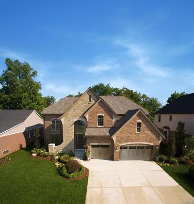 MACOMB Single Family Home For Sale: 21823 Christenbury Creek Boulevard
