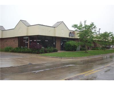 Macomb County Commercial For Sale: 23225 Nine Mack