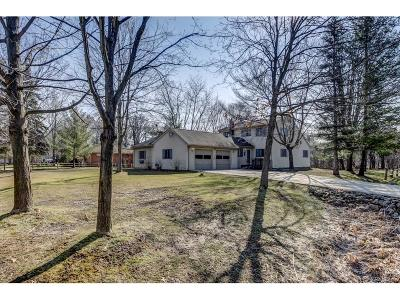 Northville Single Family Home For Sale: 47043 Curtis Road