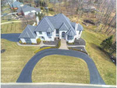 Rochester Single Family Home For Sale: 1590 Scenic Hollow Drive