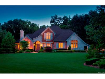 Lake Orion, Orion Twp, Clarkston, Independence Twp, Oxford Single Family Home For Sale: Eston