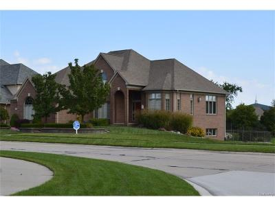Sterling Heights Single Family Home For Sale: 3386 Farmdale