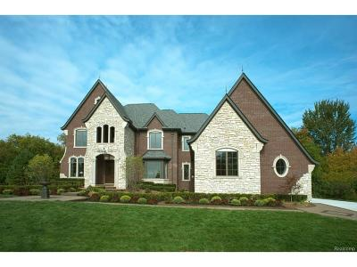 Bloomfield Twp Single Family Home For Sale: 1729 Heron Ridge