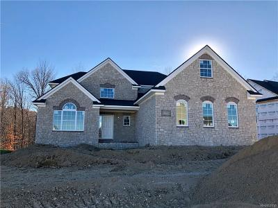 Lyon Twp Single Family Home For Sale: 51755 S Enclave Drive