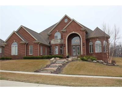 Rochester Hills Single Family Home For Sale: 1373 Traceky
