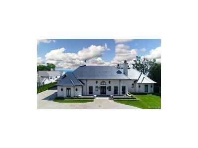 Oakland County, Wayne County Single Family Home For Sale: 984 Lake Shore Road