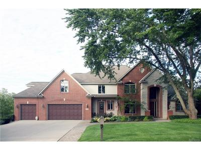 Waterford Twp Single Family Home For Sale: 331 Beverly Island