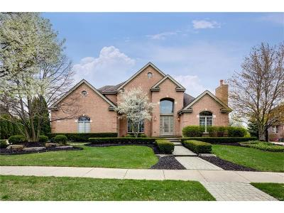 Northville Single Family Home For Sale: 18438 Clairmont Circle E