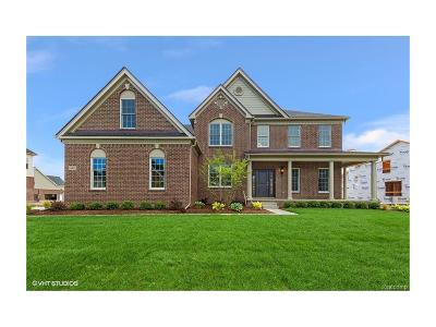 Novi Single Family Home For Sale: 24499 Acorn Trail