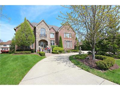 Rochester Hills Single Family Home For Sale: 3786 Cherrywood Lane