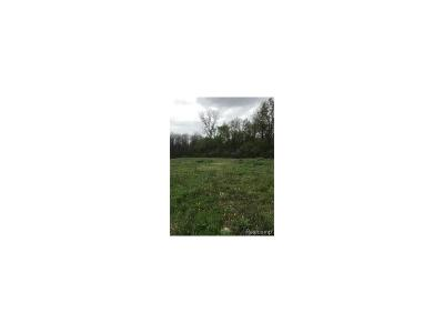 Superior, Superior Twp Residential Lots & Land For Sale: 9575 Plymouth-Ann Arbor