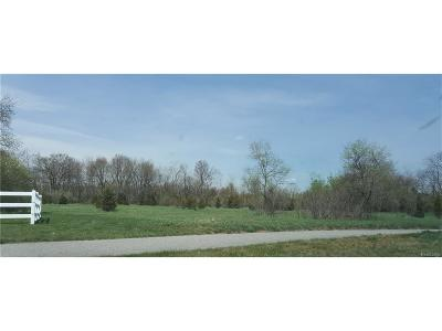 Oakland County Residential Lots & Land For Sale: Vac Highland Road