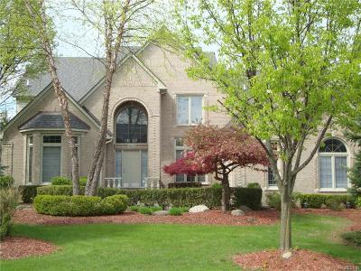Rochester Hills Single Family Home For Sale: 3862 Teakwood Lane