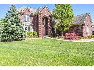 Rochester Hills Single Family Home For Sale: 1185 Sparkle Court