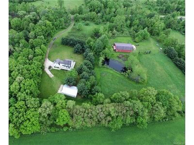 Livingston County Single Family Home For Sale: 6216 Sistek Drive