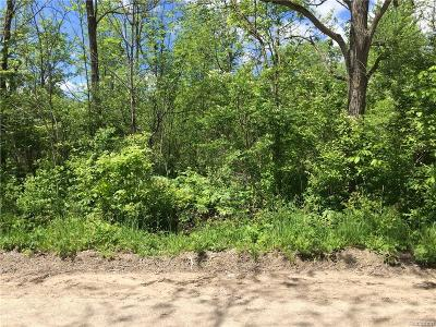 Superior, Superior Twp Residential Lots & Land For Sale: Berry Road