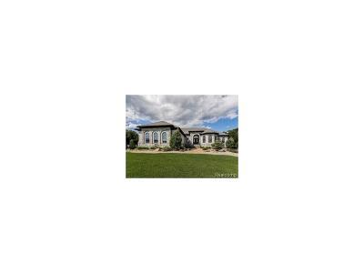 Washtenaw County Single Family Home For Sale: 9320 Stoneview Lane