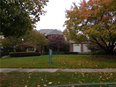 Northville Single Family Home For Sale: 17162 Stonebrook