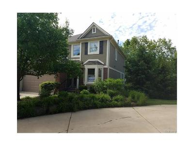 Northville Condo/Townhouse For Sale: 408 Mountainview Drive