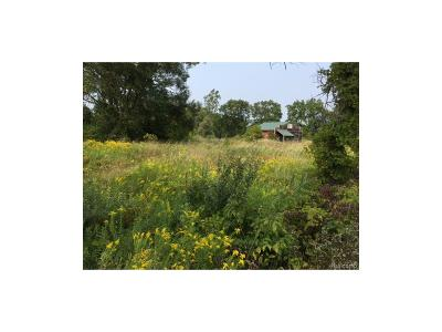 Superior Twp, Ypsilanti, Ypsilanti Twp Residential Lots & Land For Sale: 7621 Warren Road