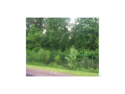 Huron Twp Residential Lots & Land For Sale: 26620 Rinne Road