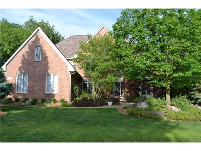 Rochester Single Family Home For Sale: 1806 Westridge Drive