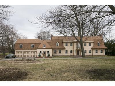 Detroit Single Family Home For Sale: 18910 Fairway Drive