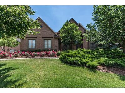Northville Single Family Home For Sale: 17706 Stonebrook Drive